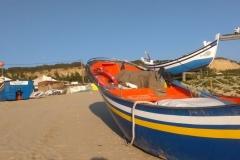 Na strone szkoly portugalia_html_m38c8f26d